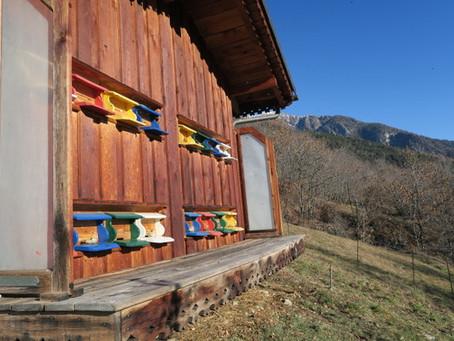 Biohof - Imker Gabi und seine Bienen