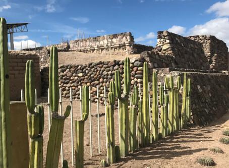 LAMBITYECO (MEX)