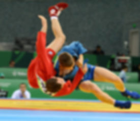 1200px-Sambo_at_the_2015_European_Games.