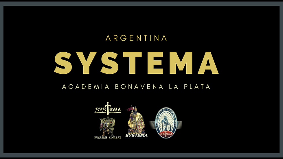 systema web.png