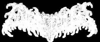 Logo valkoinen rajattu 800x377.png
