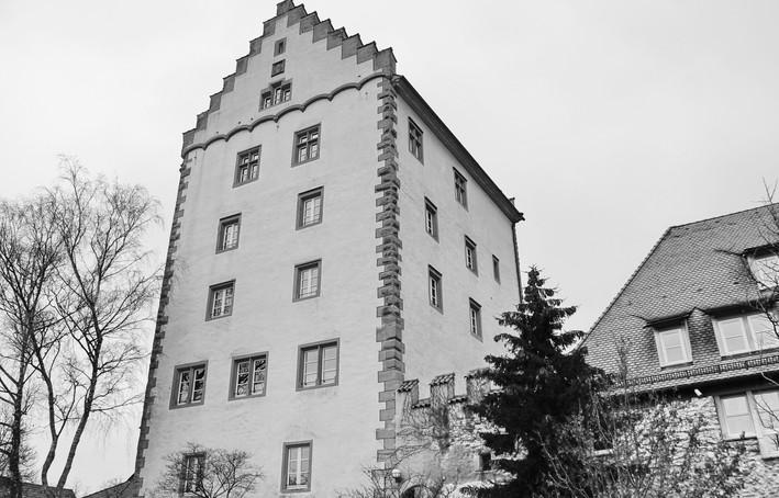 _MG_0020Markdorf.JPG