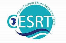CESRT Logo.jpg
