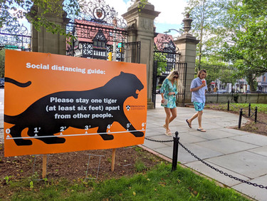 Special COVID Feature: Students, Faculty, Many Others Anxious for Princeton University's Reopening