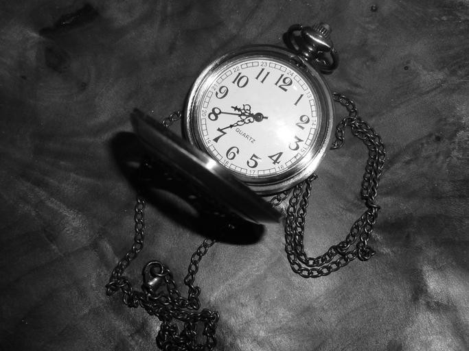 Image of a watch - because time flies in the pest control industry!