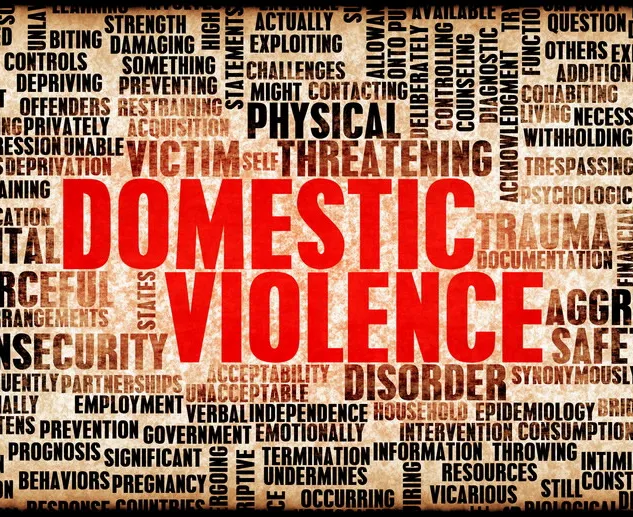Tackling another pandemic: Domestic Violence