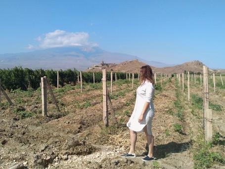 Diário de viagem pelo Cáucaso: Capítulo Armênia