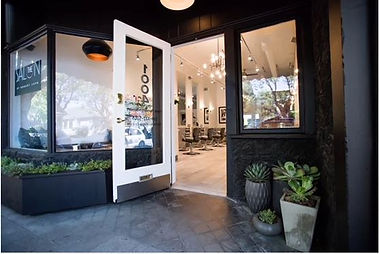 The Salon by Robert Lupo photo 2.JPG