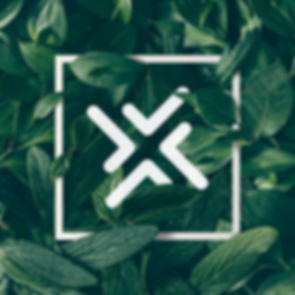 x-green.png