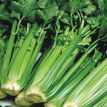 """Seeds: Celery """"Utah"""""""
