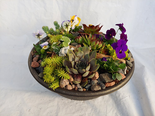 Super Succulent Planter - Small