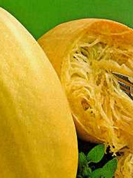 "Seeds: Squash - ""Vegetable Spaghetti"""