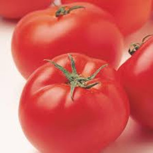 "Seeds: Tomato ""Patio"""