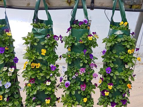 Hanging Bag - Viola Sorbet Mix