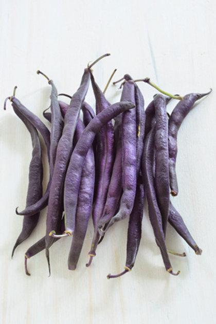 Seeds: Beans - Royal Burgundy