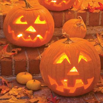 "Seeds: Pumpkin - ""Jack-o-Lantern"""