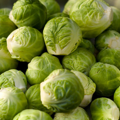 """Seeds: Brussel Sprouts """"Long Island Improved"""""""