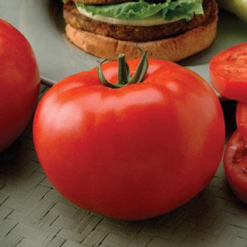 """Seeds: Tomato """"Beefsteak"""""""