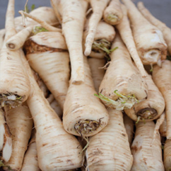 "Seeds: Parsnips - ""Hollow Crown"""