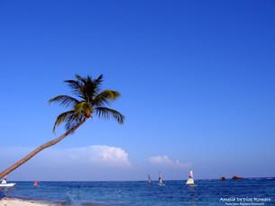 Una foto, un día: Punta Cana