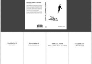 Las partes de la novela