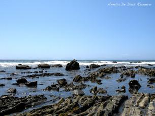 Una foto, un día: Laguna Beach.