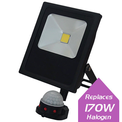 Lumanor LED Floodlights - 30W + PIR IP65