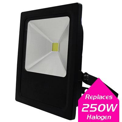 Lumanor LED Floodlights - 50W