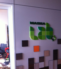Masisa Lab 2.jpg