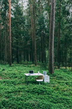ANTLESS forest perspective