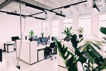 Open Office Startups SPG