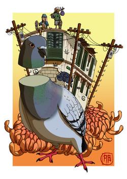 street_pigeon(complete)