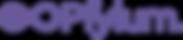 Pfylum_logo_sidebyside_color_2018-12-17.