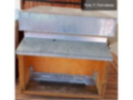 il fantastico mondo delle api A2.jpg