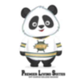 PLS-Panda-GameDay-HomeJersey.png