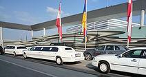Opernball 3 Limousinen