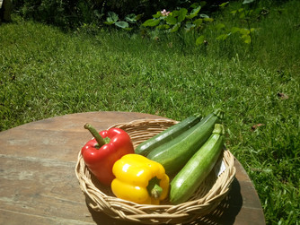 New veggies for our fresh basket!