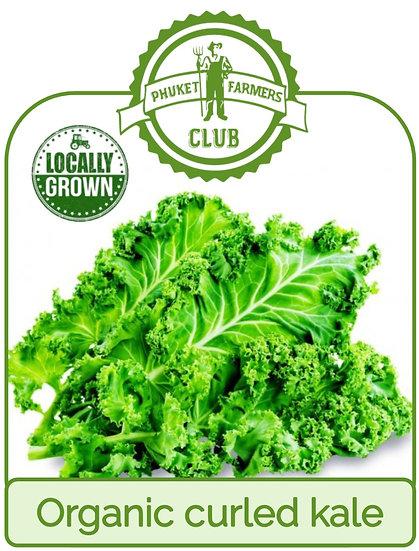 Local organic curled kale