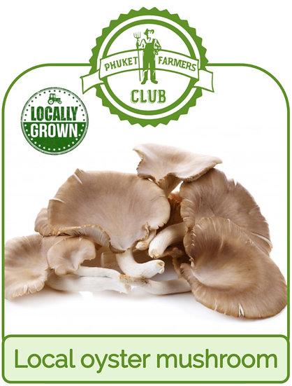 Local oyster mushroom
