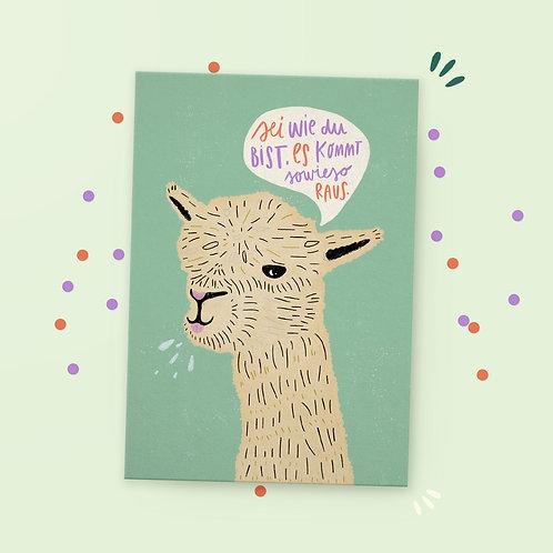 Postkarte »Lama«