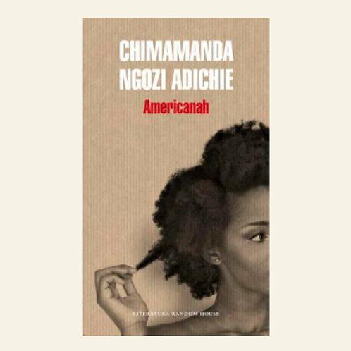 Americanah  | Chiamamanda Ngozi Adichie