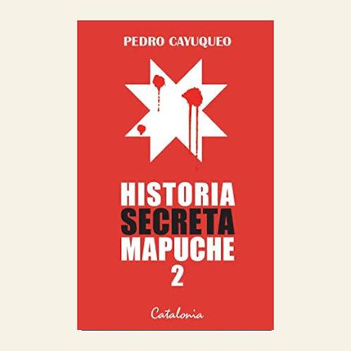 Historia secreta mapuche 2 | Pedro Cayuqueo