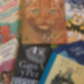 Gran selección de libros ilustrados