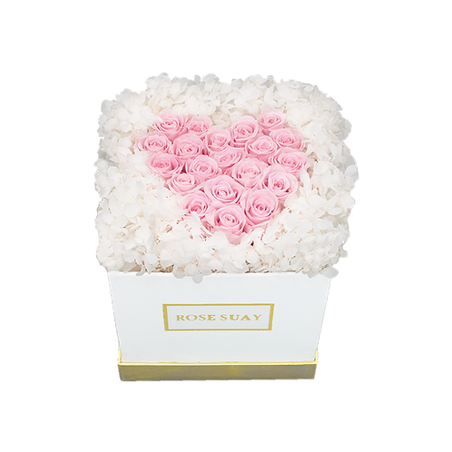 white and soft pink eternity flowers - small white square box