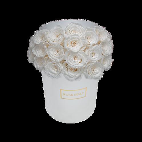 white eternity roses - small white round box