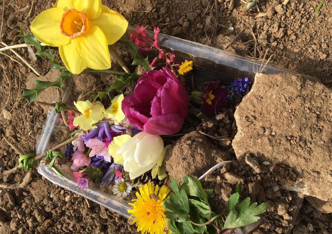 Jacob's Easter Garden