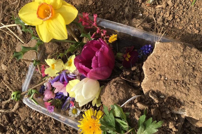 Easter Garden 1