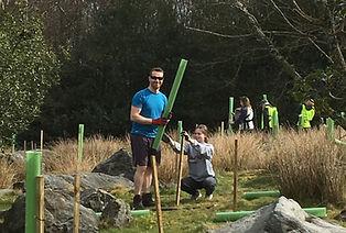 Tree planting at Thornthwaite