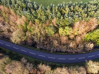 road-2323994_1920.jpg