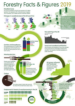 Forestry Infographic